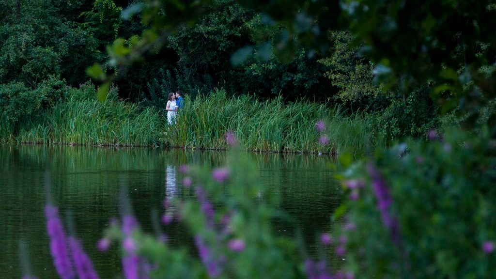 Woman in white dress and man in blue shirt kiss on lakeside behind bullrushes